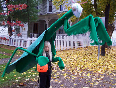 Halloween costume - praying mantis