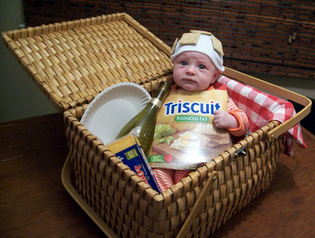 Halloween costume - Triscuit baby